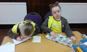 brownies shoebpox appeal